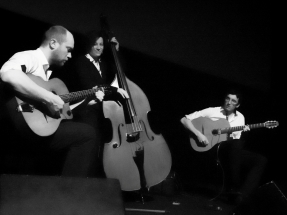 Groupe jazz manouche Lille (7)